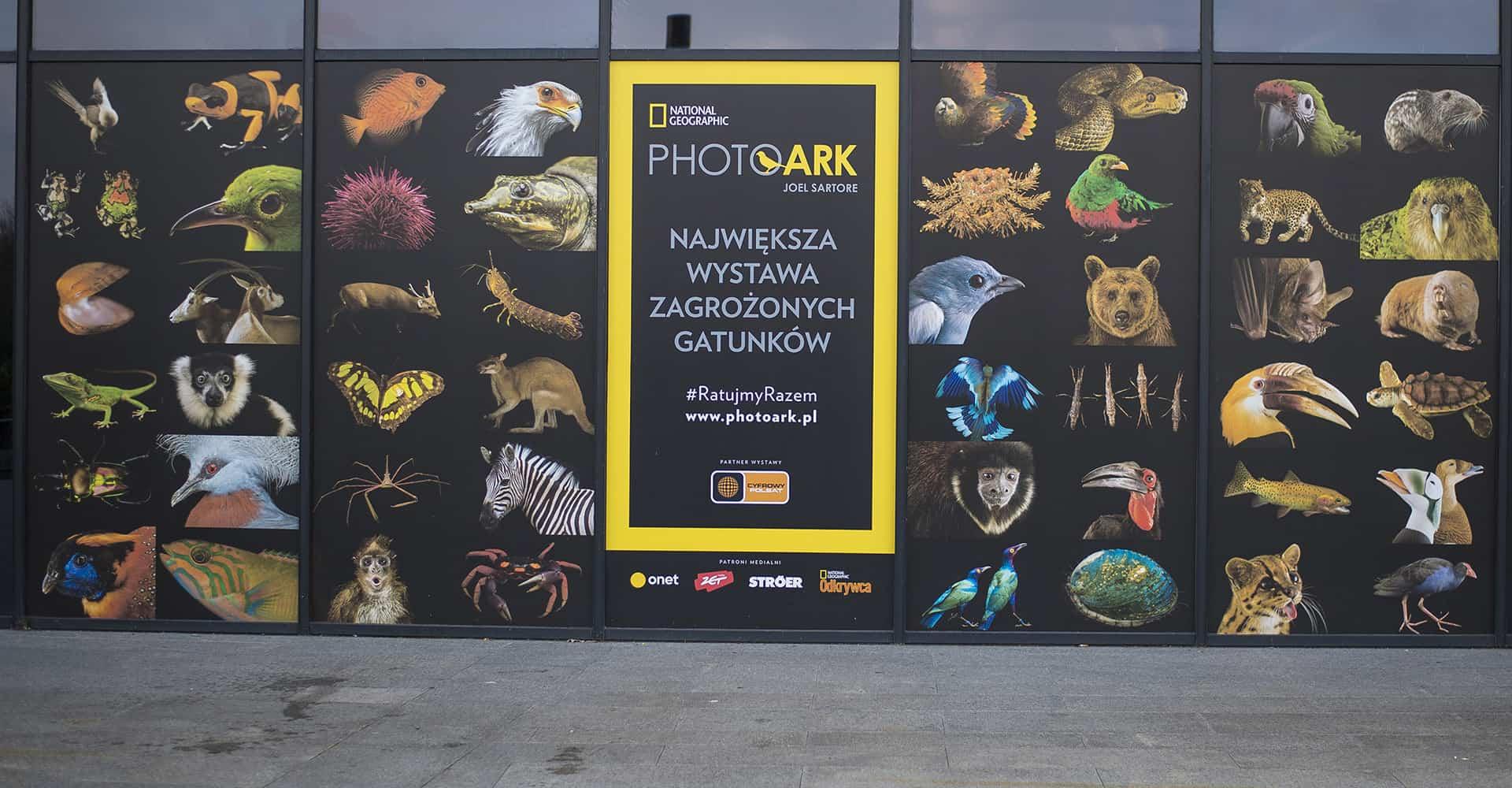 Photo Ark dla National Geographic